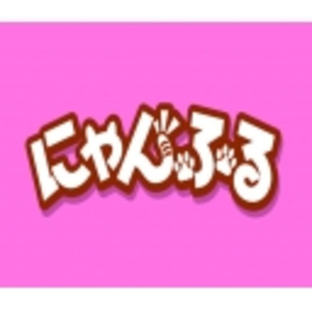 にゃんふる日和(*´ω`*)