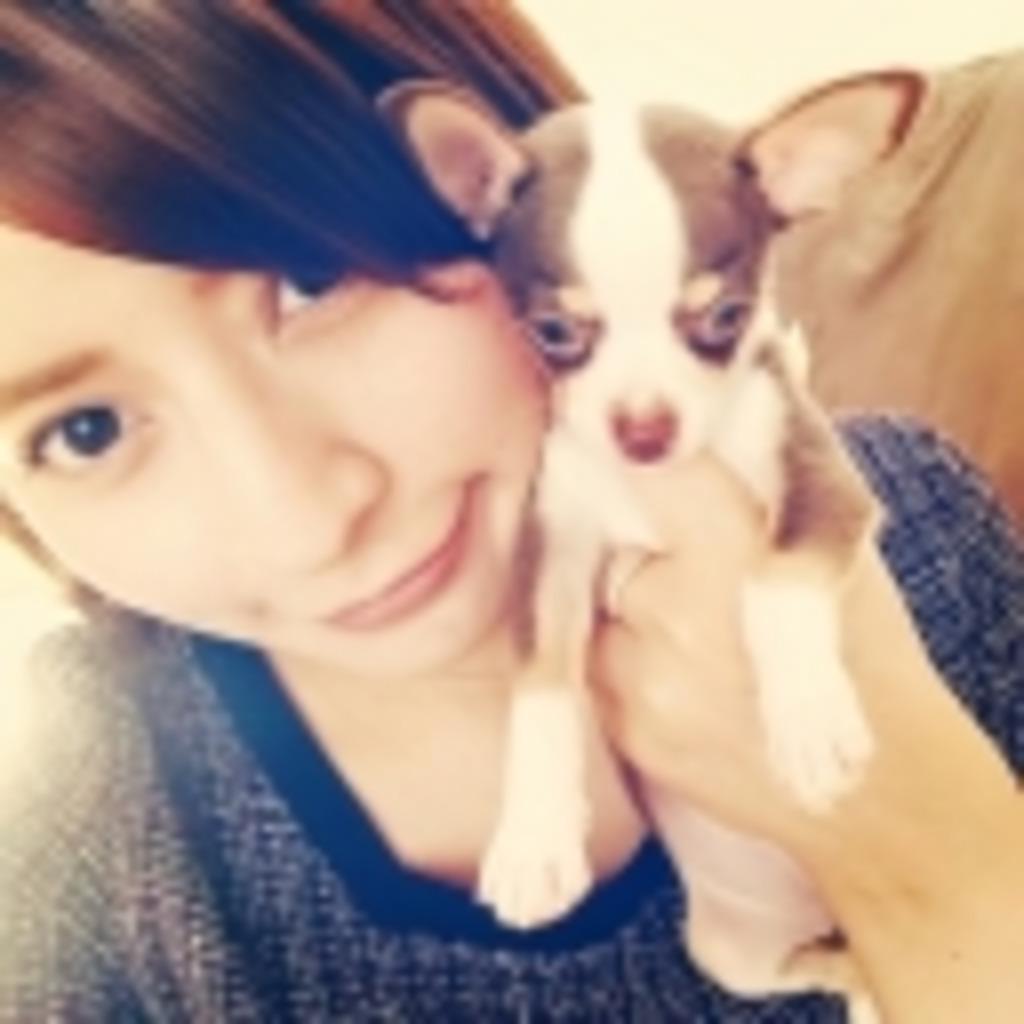 。・☆★SOFFY'S LIVE BROADCASTING☆★。・