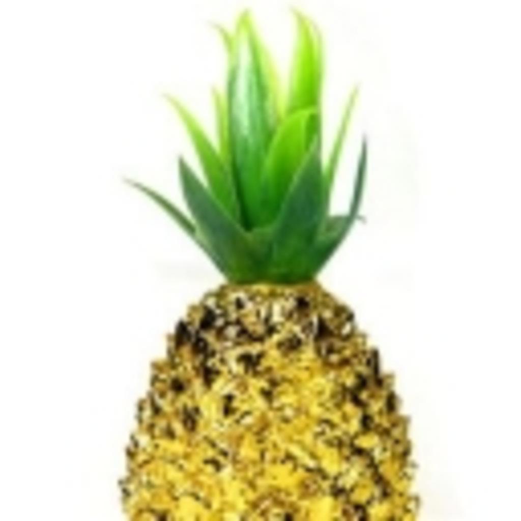 【パイナップルでも】白ひげ海賊団1番隊隊長マルコ【バナナでもおk】