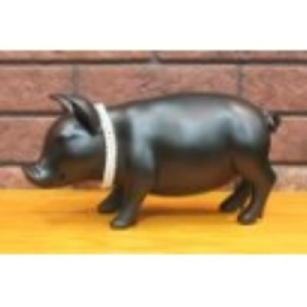 人に憧れる豚が70㌔から50㌔になる配信