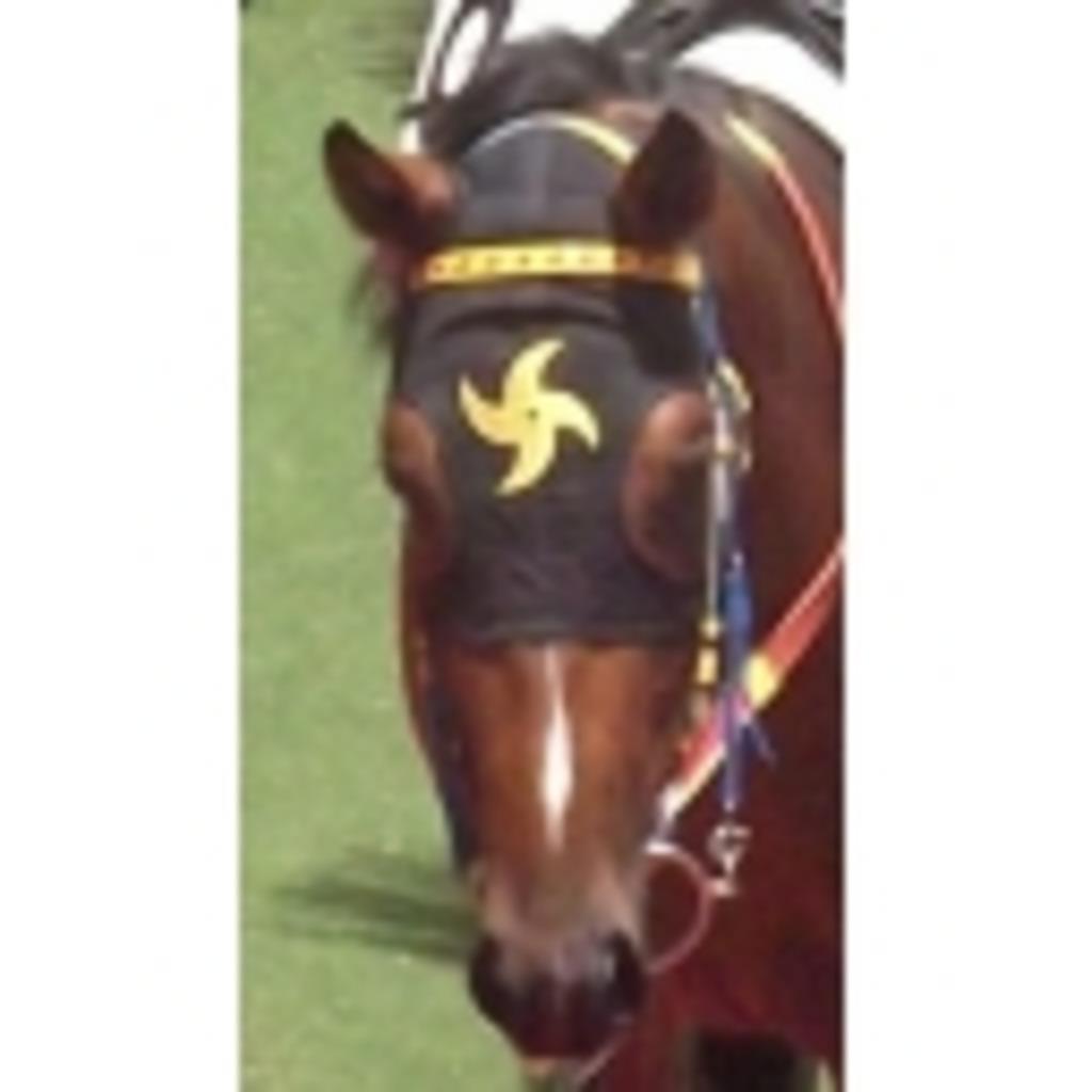 Horse Racing Broadcast