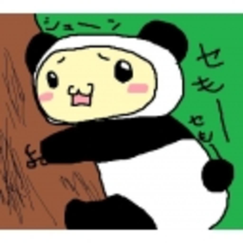 冴えないパンダのその日暮らし