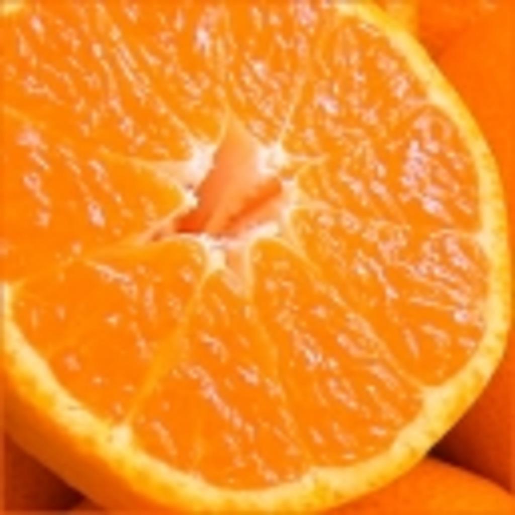 オレンジとみかんは違う