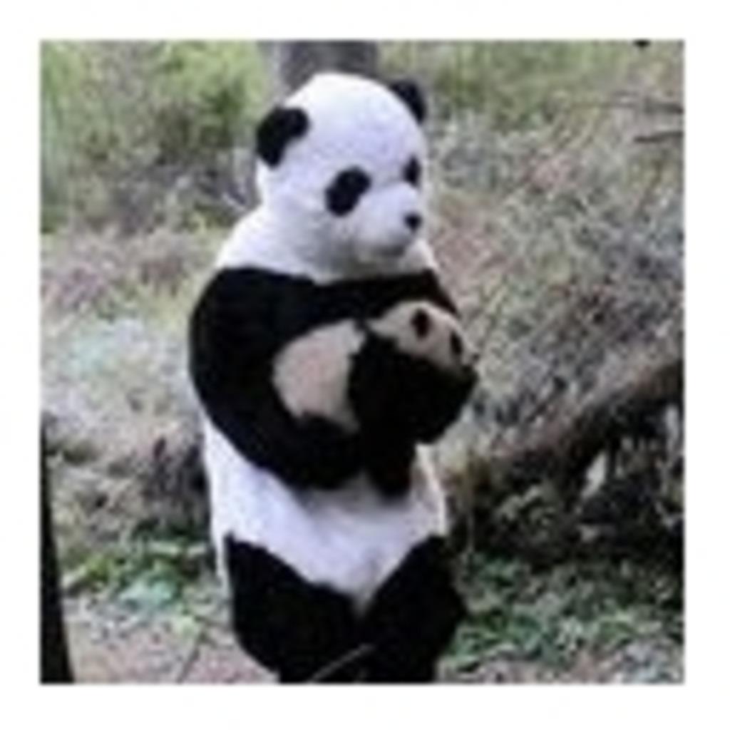 PANDAの何かしているとこ