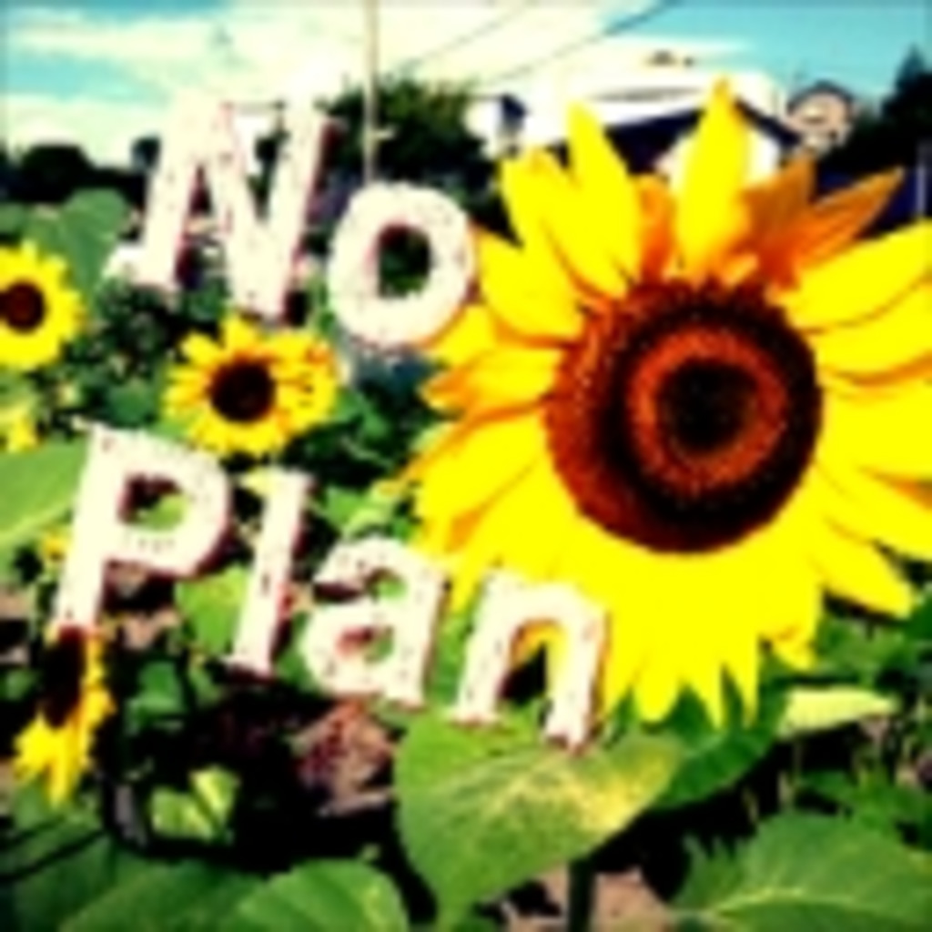No Plan!!!