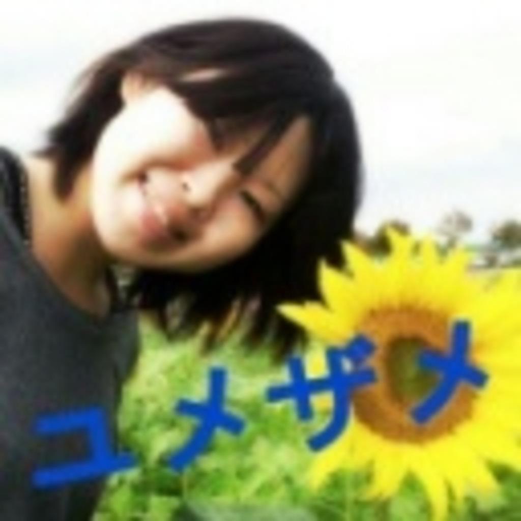 ユメザメ☆彡おしえて放送