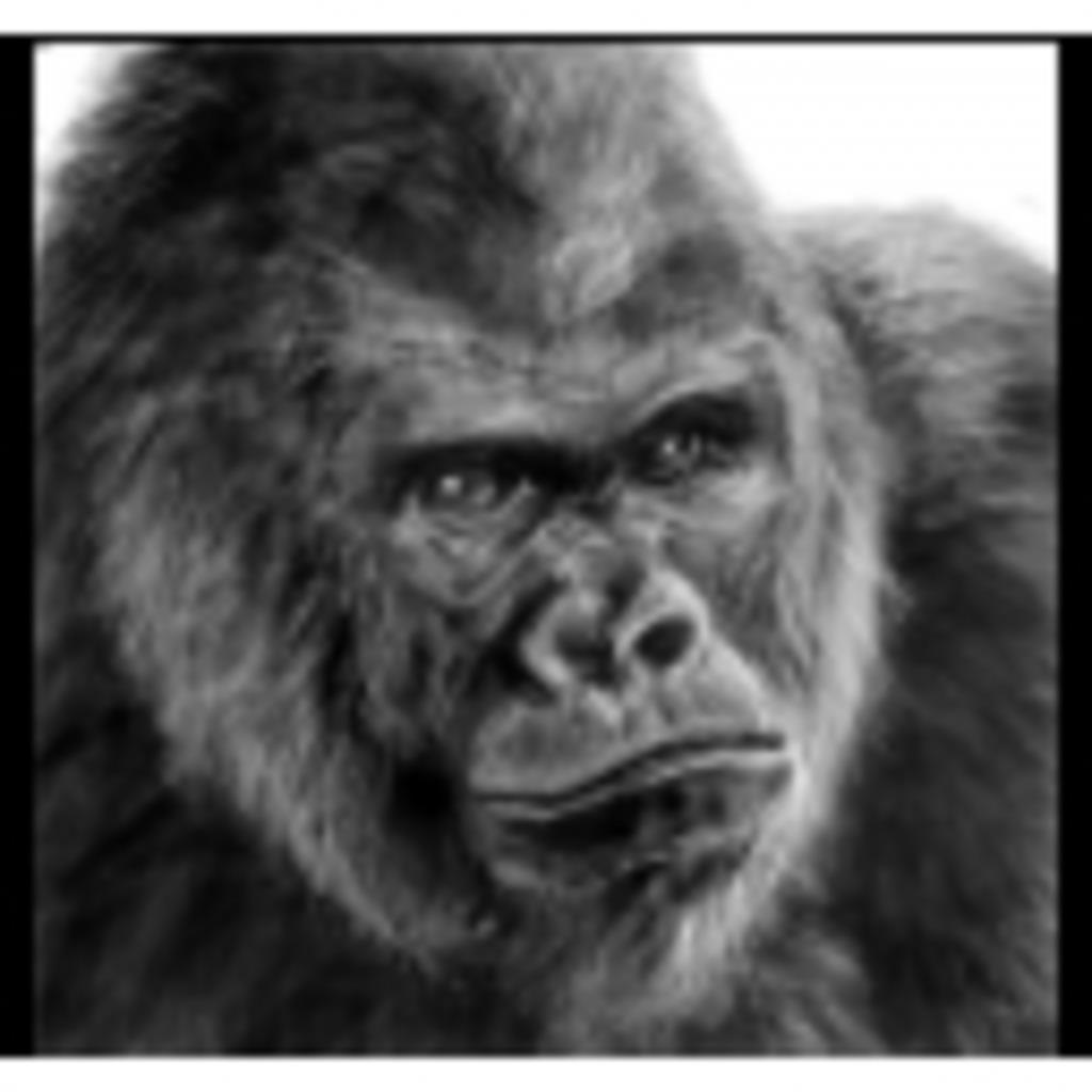 オナニーゴリラ動物園