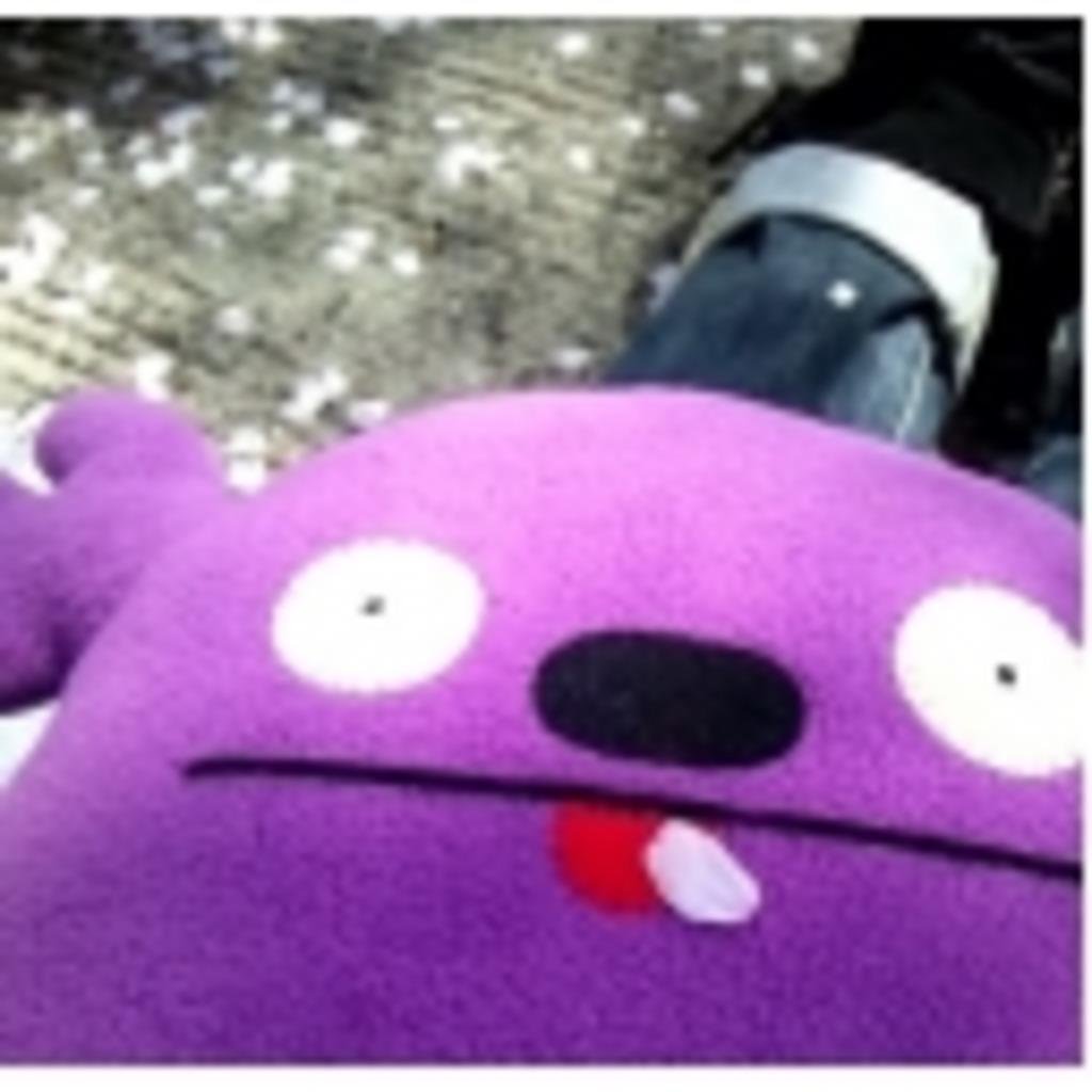 カメラ部:泣き虫きっぽ꒰´•௰•`๑꒱