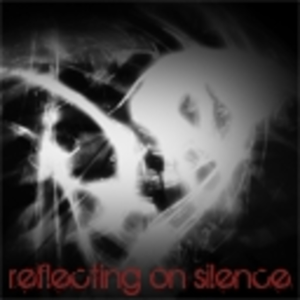 reflecting on silence