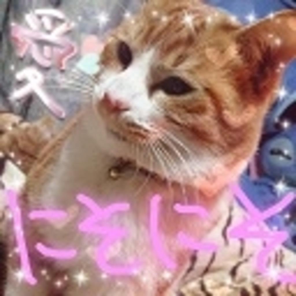 【かばたん】NN化計画(∩`ω´)⊃))シュッシュ