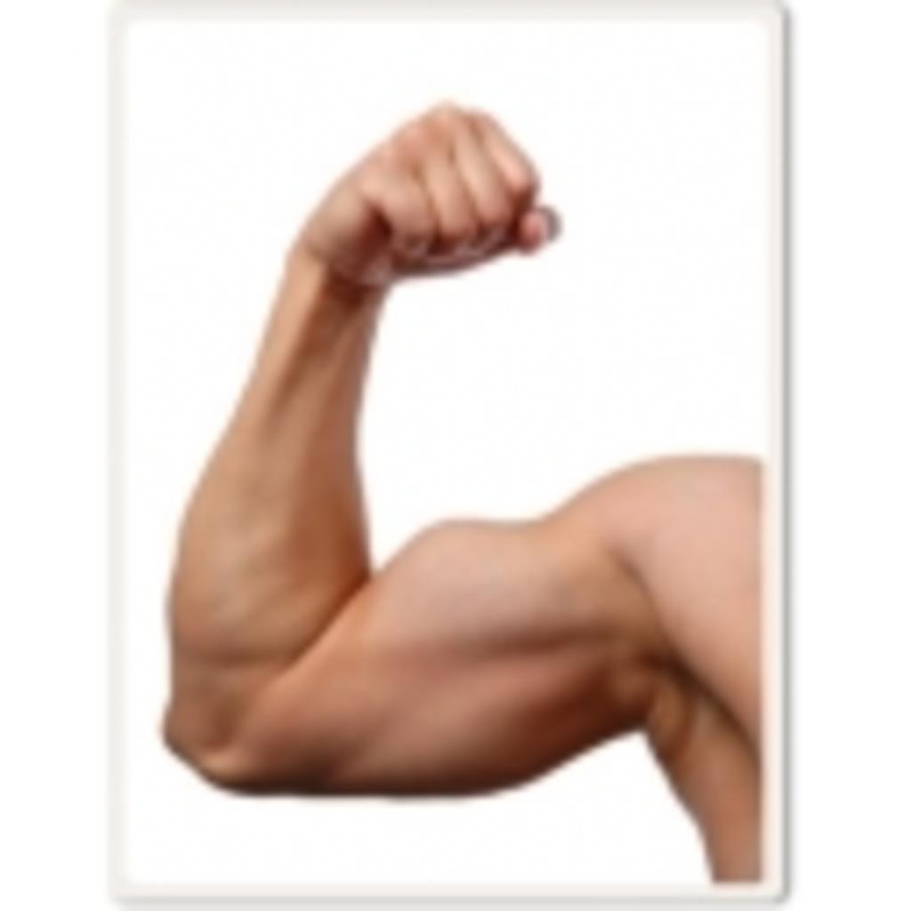 まっちょんまんの筋肉塾