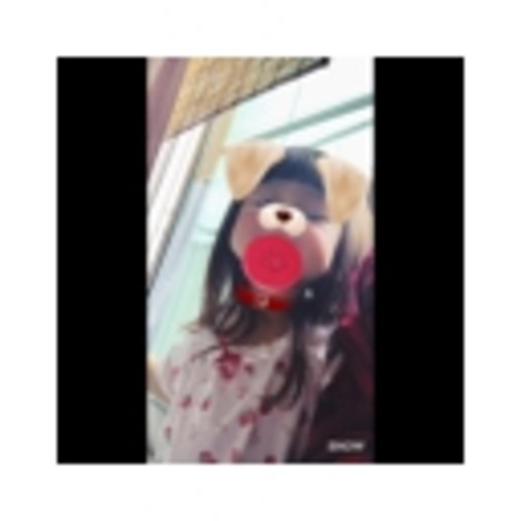 ぱぴろん日常╮(´・ᴗ・` )╭