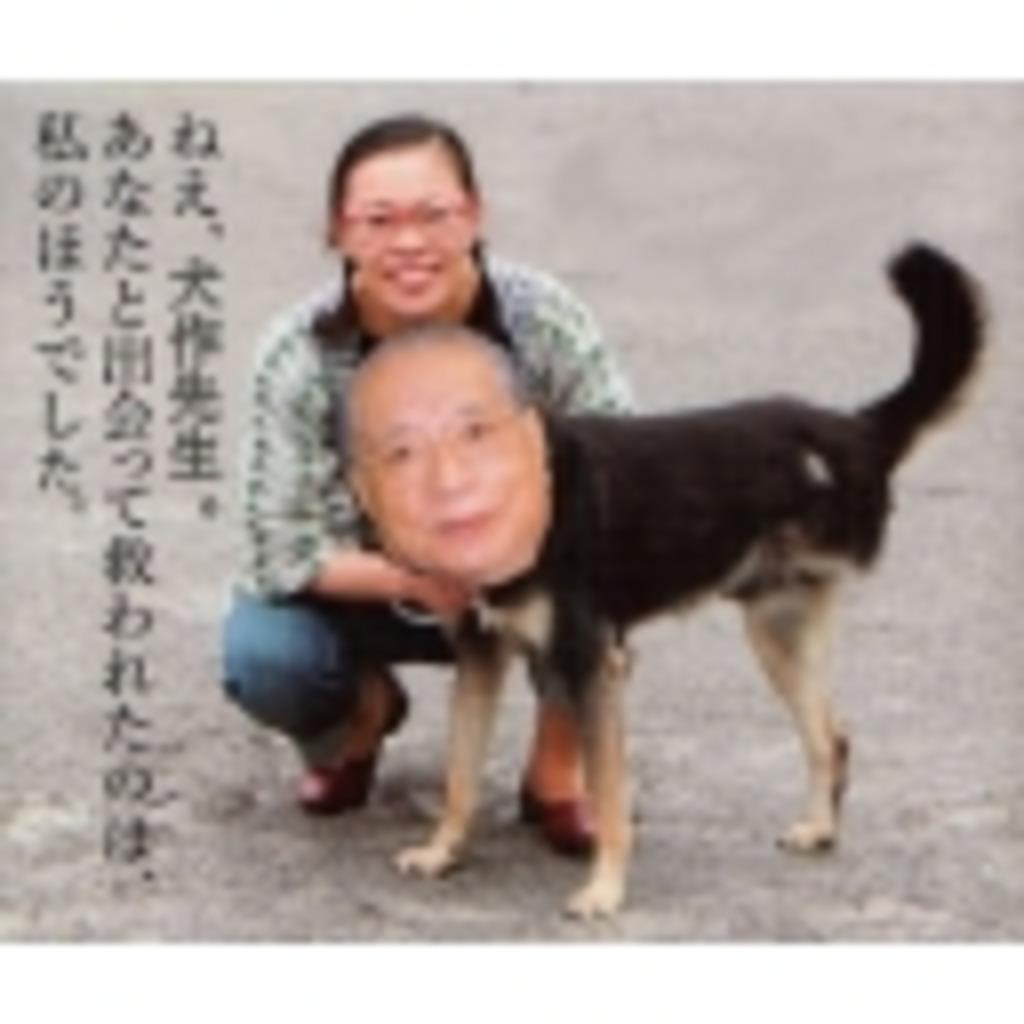 柴田理恵ファンコミュ(笑う