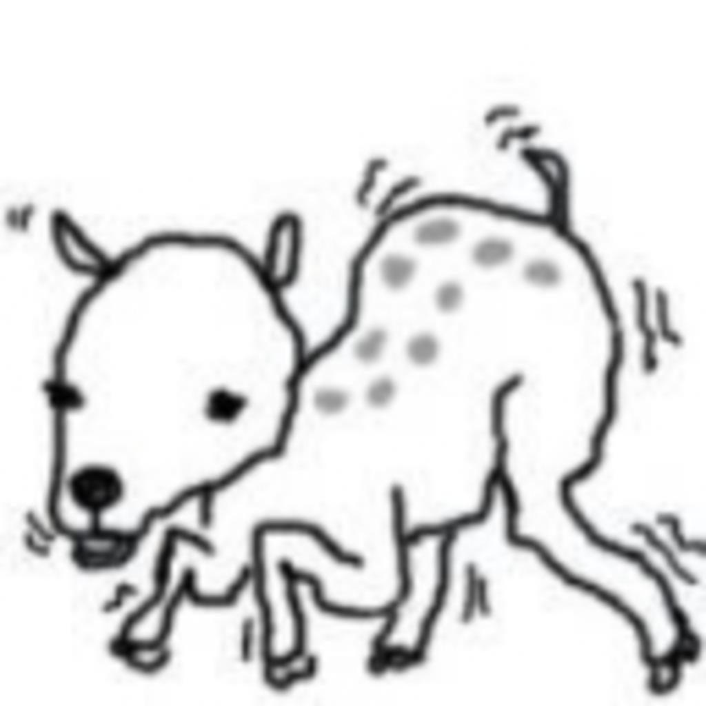 子鹿が獅子になった