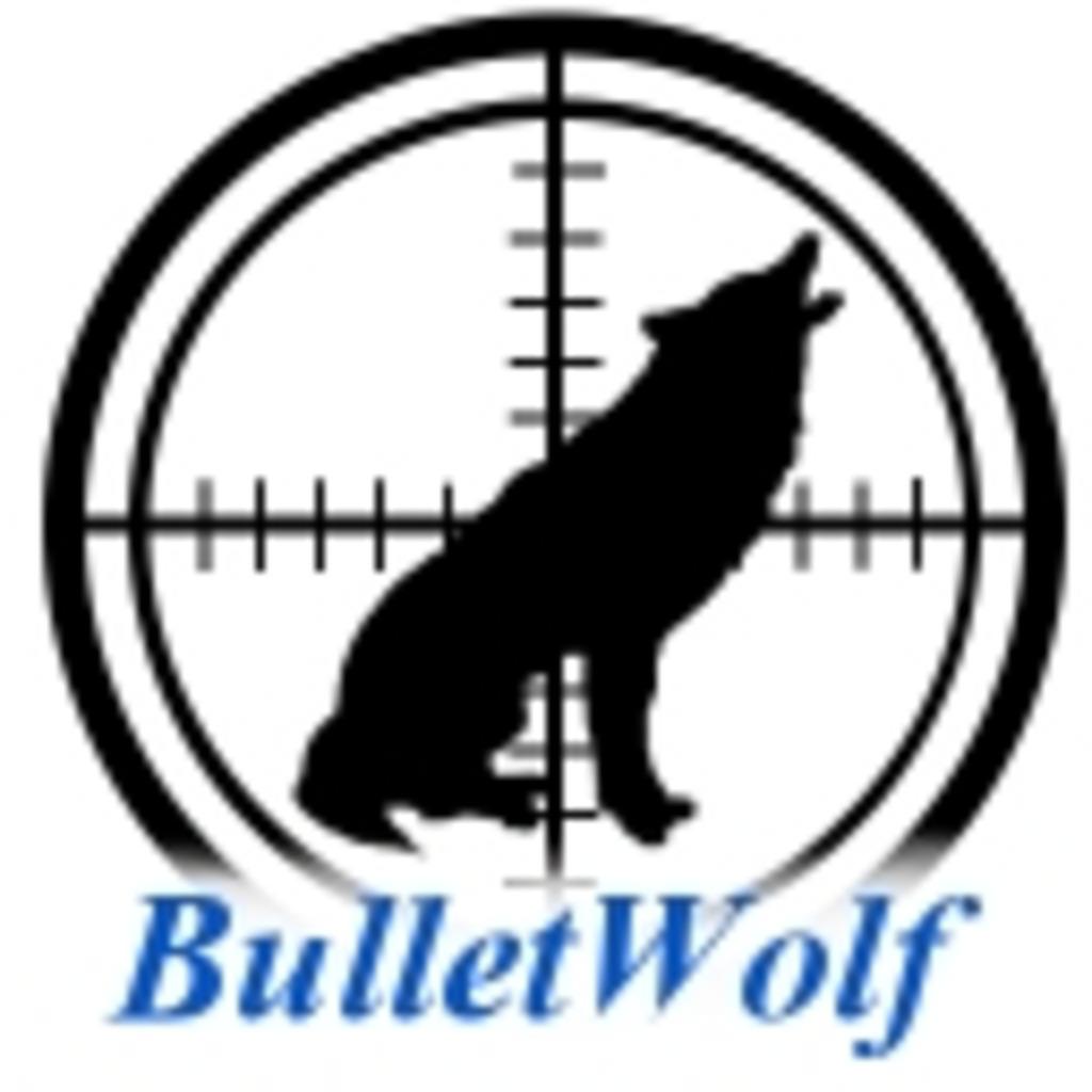 BulletWolf AVAの時間