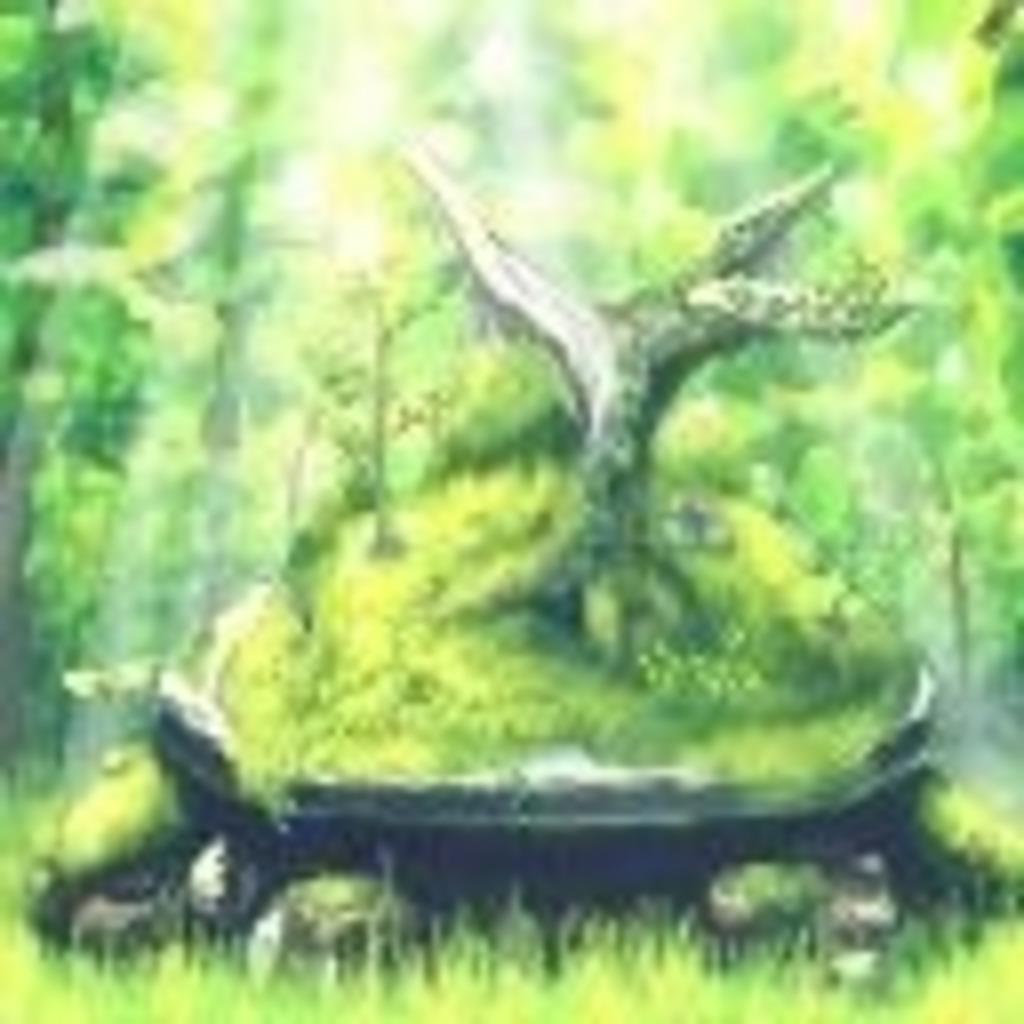 ドダイトスの木陰で