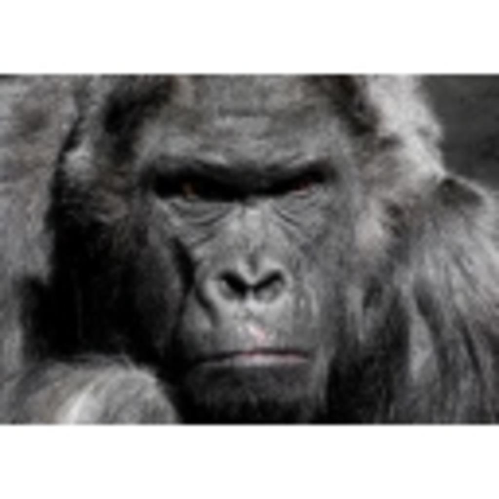 ウッホ動物園