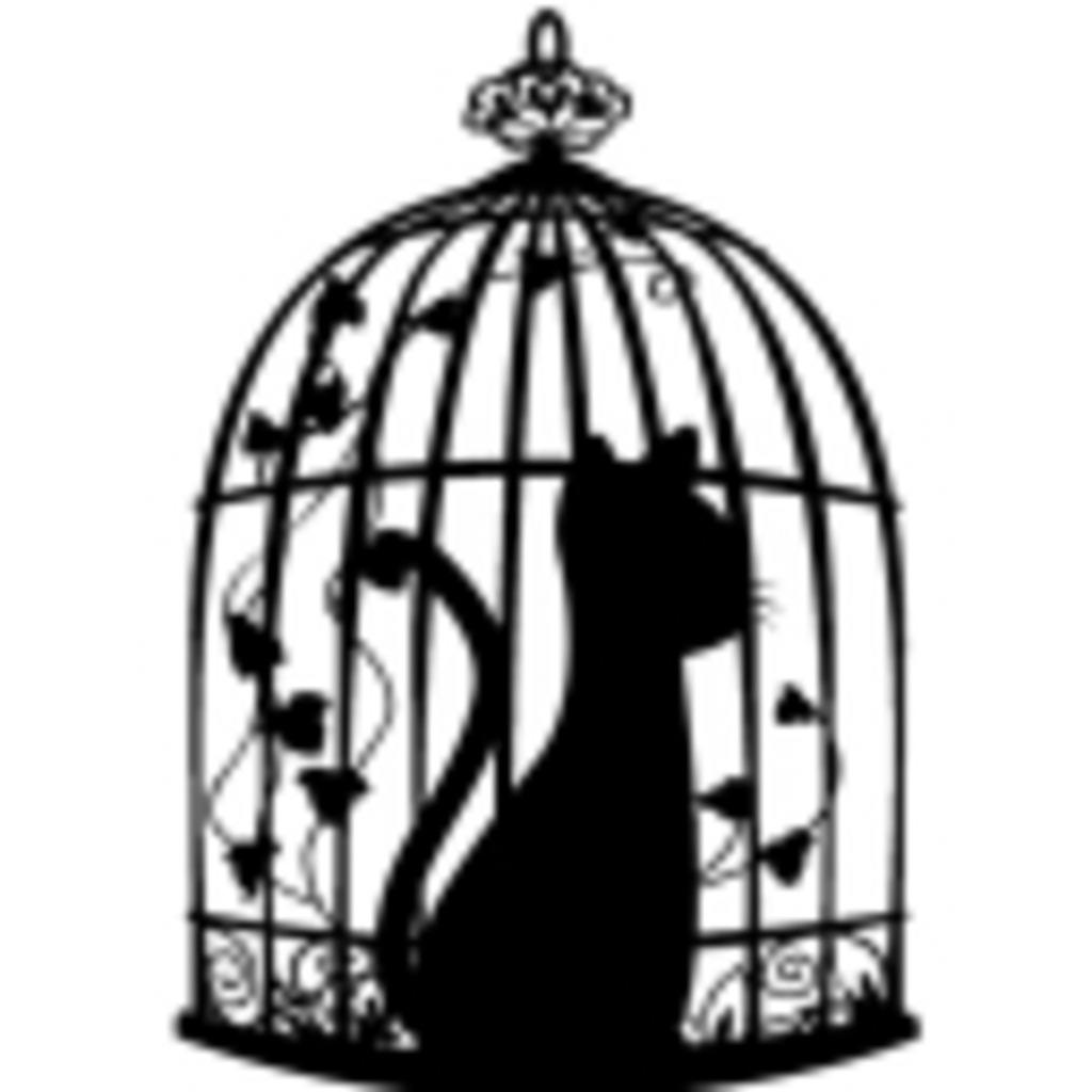 鳥籠の猫 ~ Cat in the bird cage ~