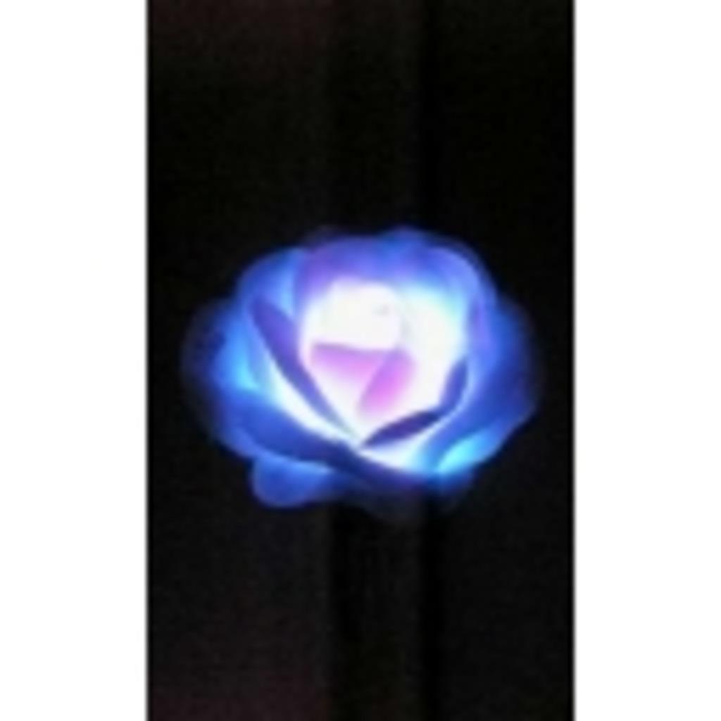†ボンジュール!咲き誇れ、薔薇のごとく...†