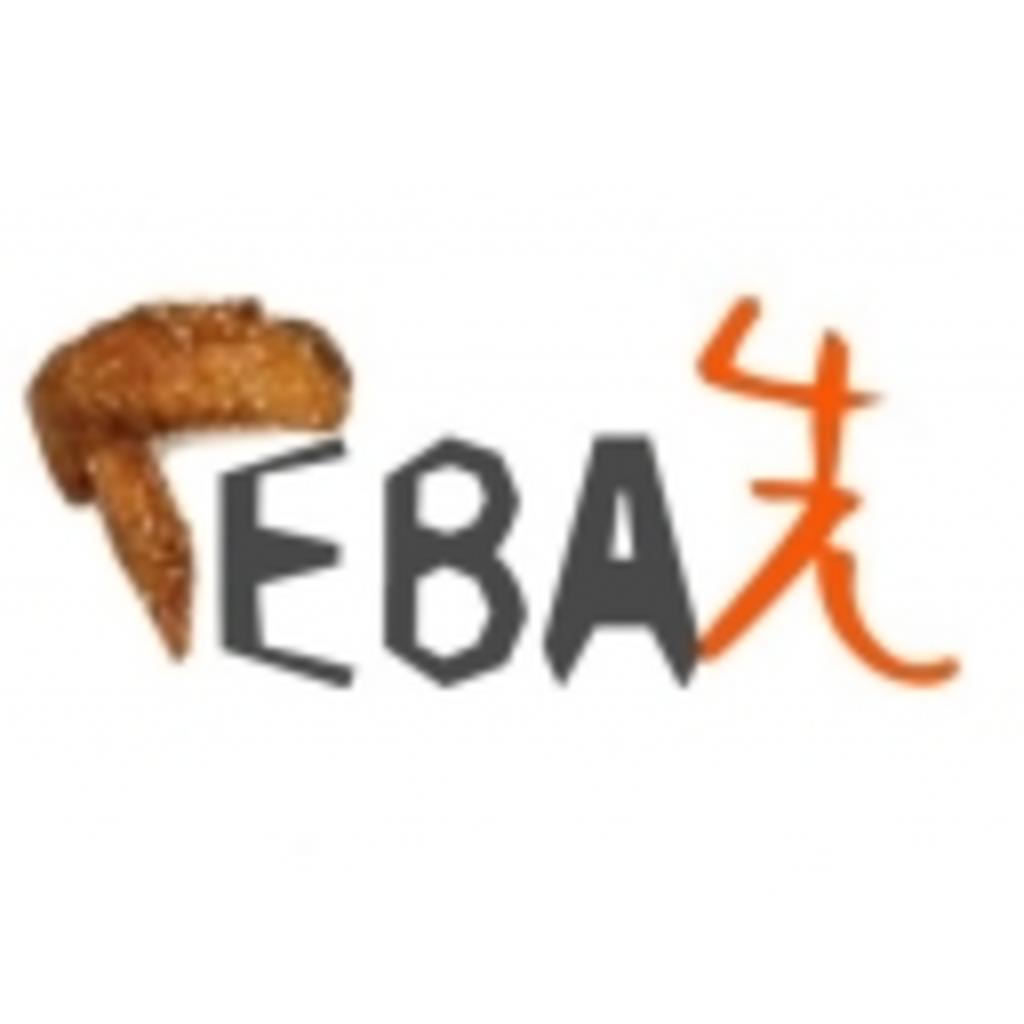 手羽先-TEBA-