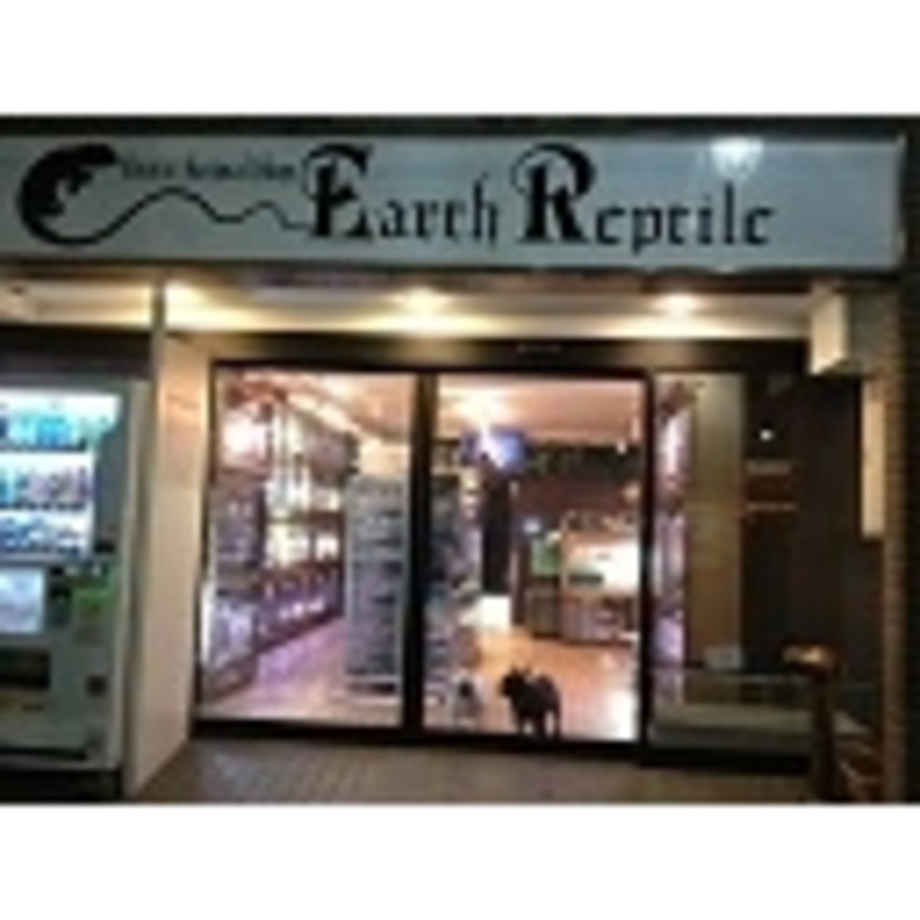 Earth Reptile