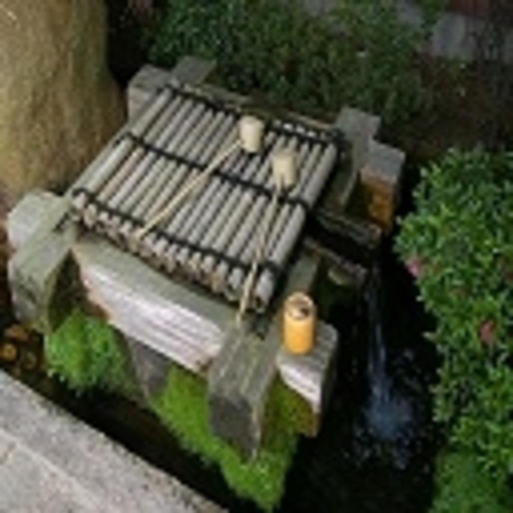 井の中の蛙が水遊び