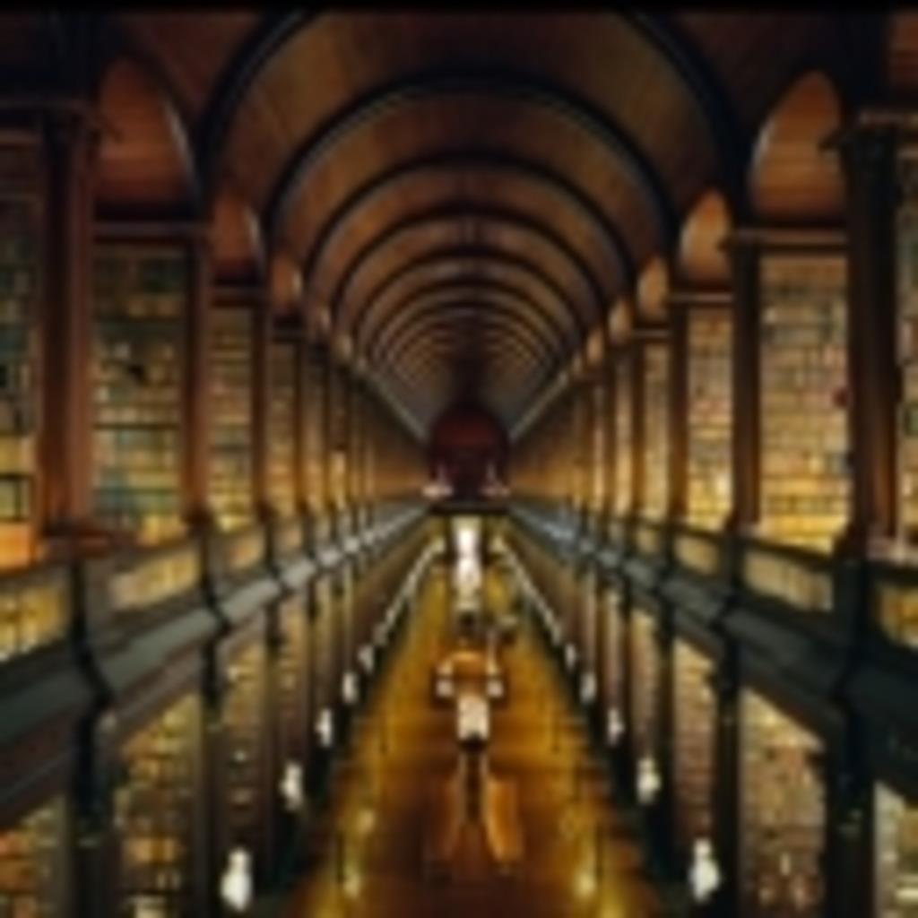 迷宮図書館の窓際