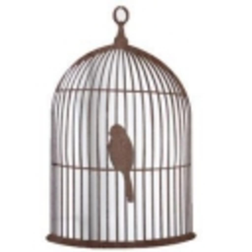 玄鳥の鳥籠