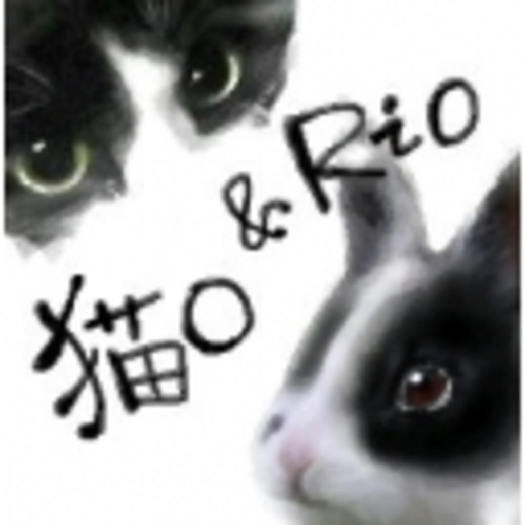 猫○によるちょっとしたゲーム事情(仮)