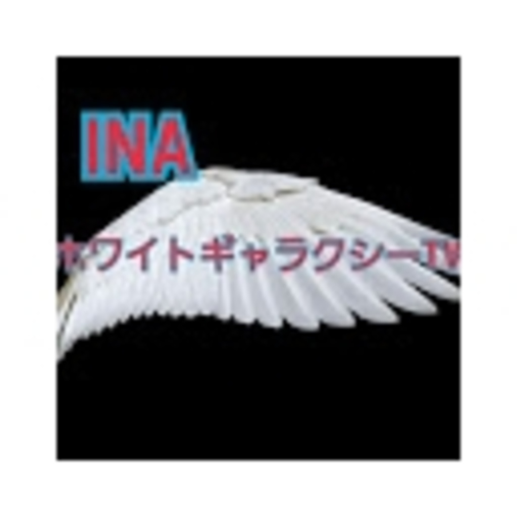INAホワイトギャラクシーTV公式放送
