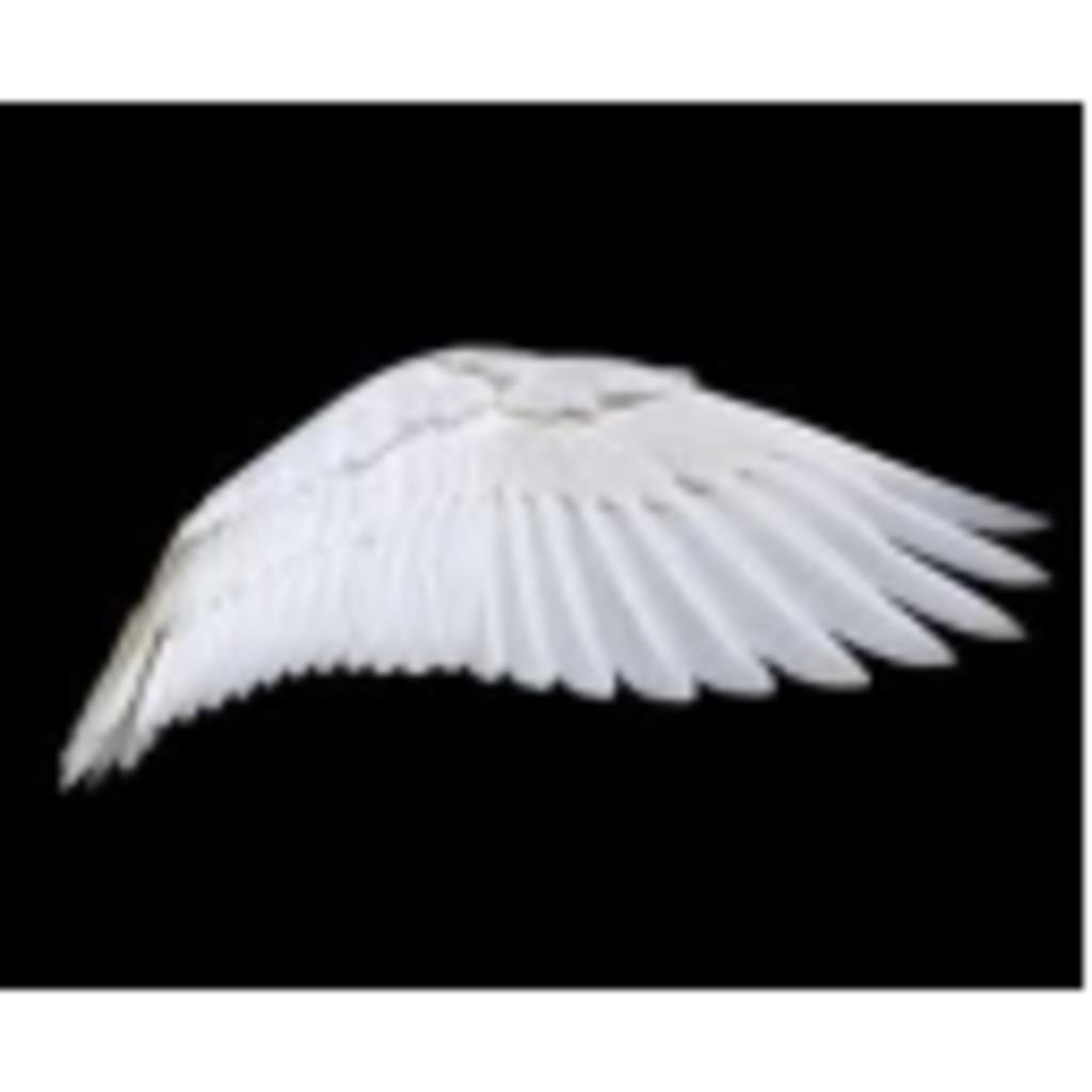 つばこみゅ(静)~翼の折れた天使達~