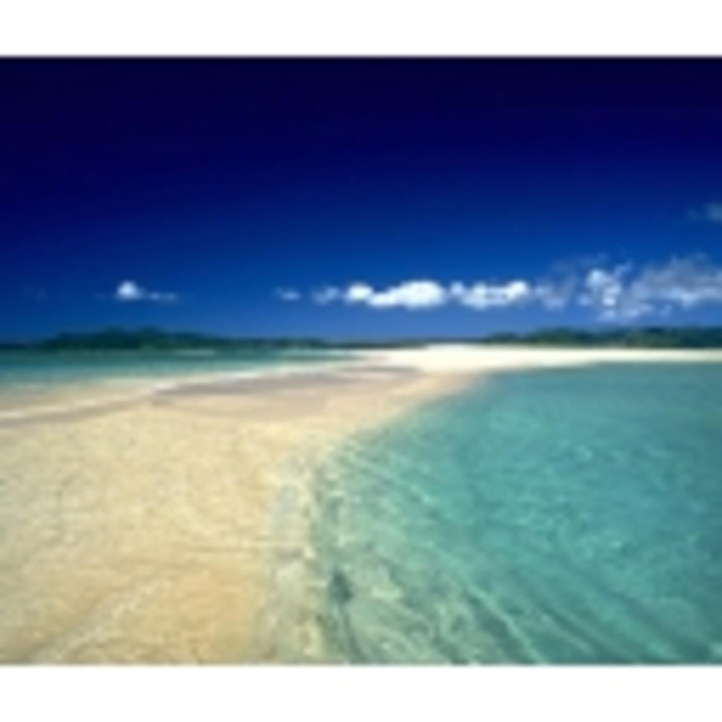 沖縄からのんびりFX
