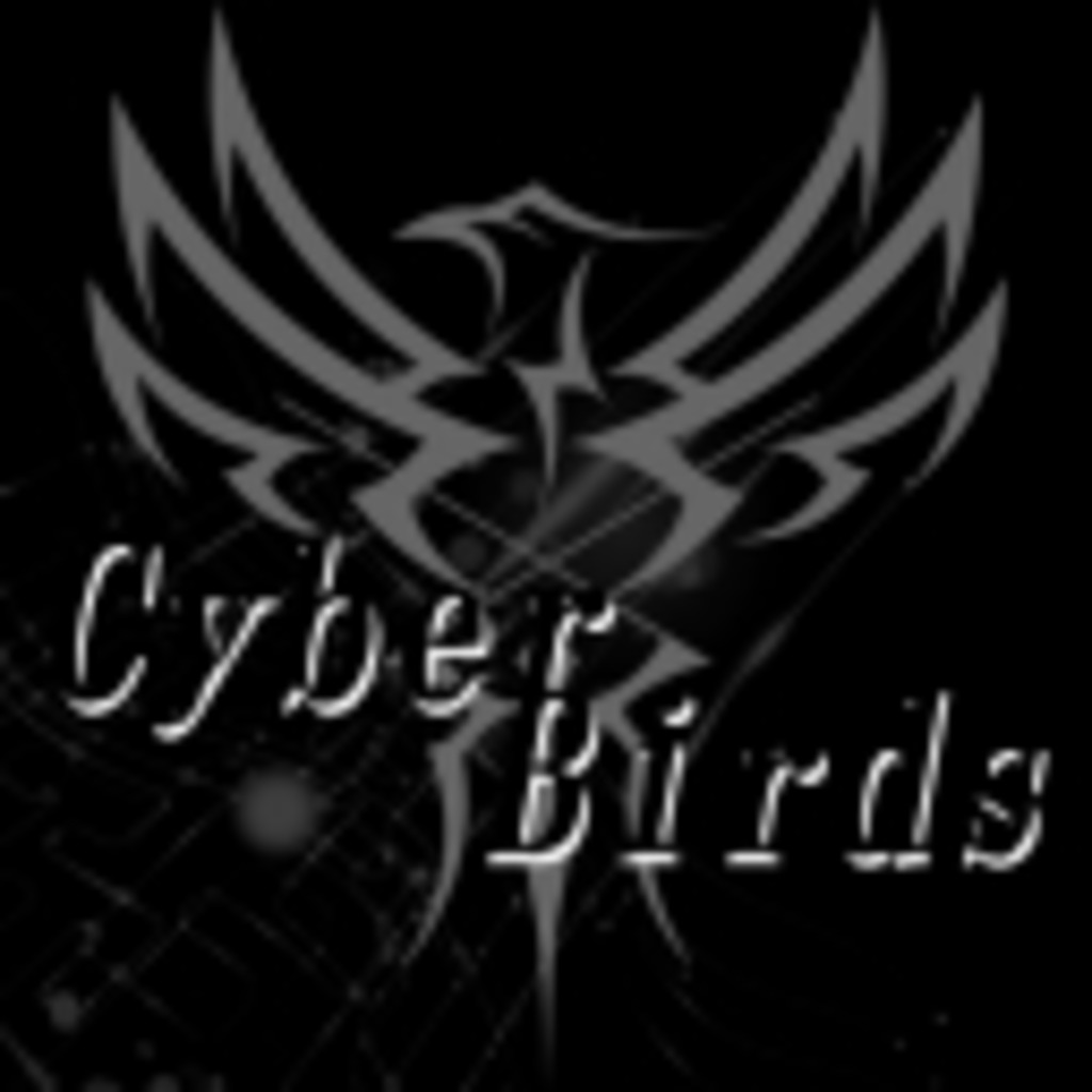 Gamers' Team『Cyber Birds』