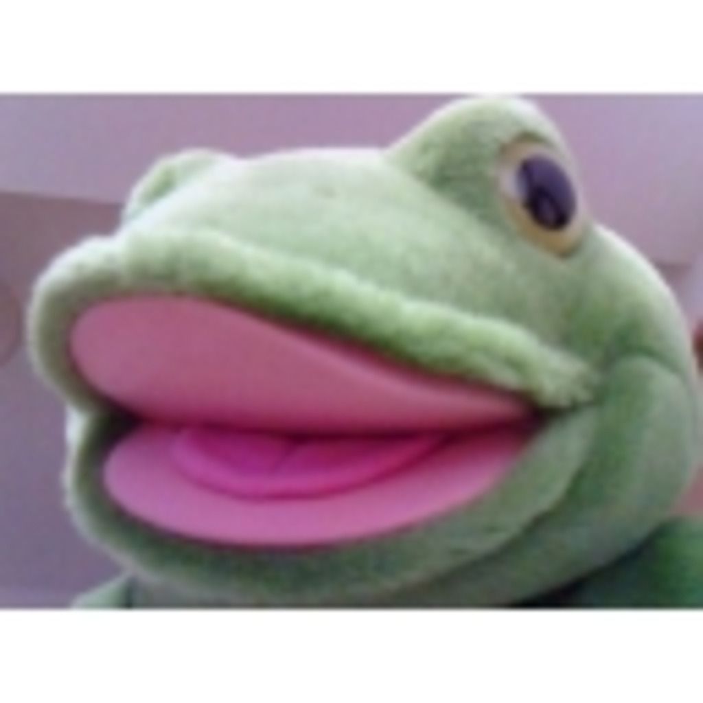 カエル君の放送枠