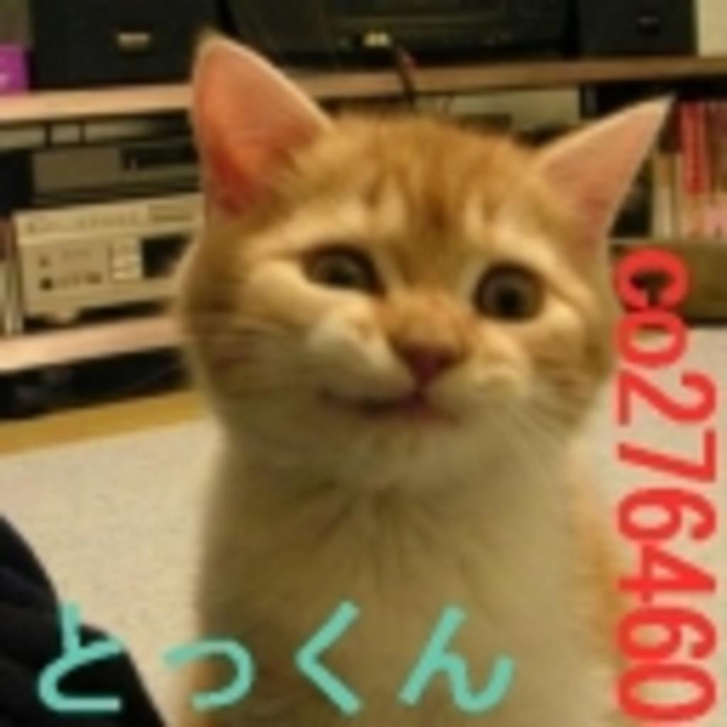 猫汁~またたびのかほり。とっくん風味~