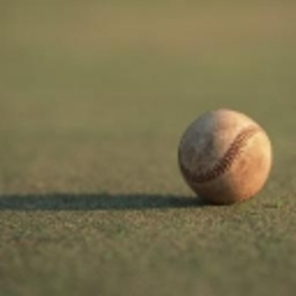 草野球しよう