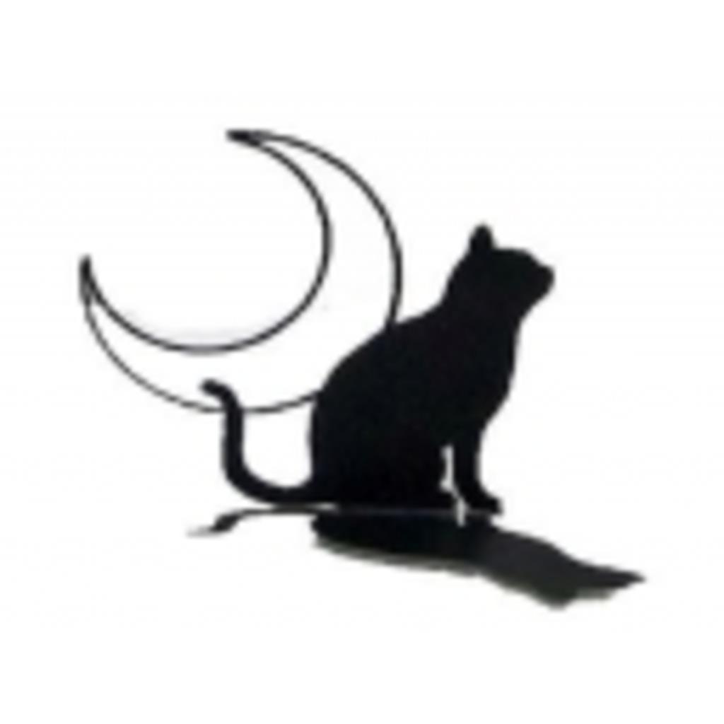 黒猫好きがまったりとする。
