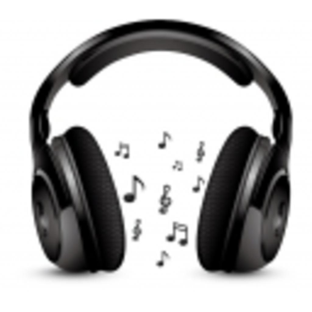 趣味欄に音楽鑑賞って書いちゃうタイプ