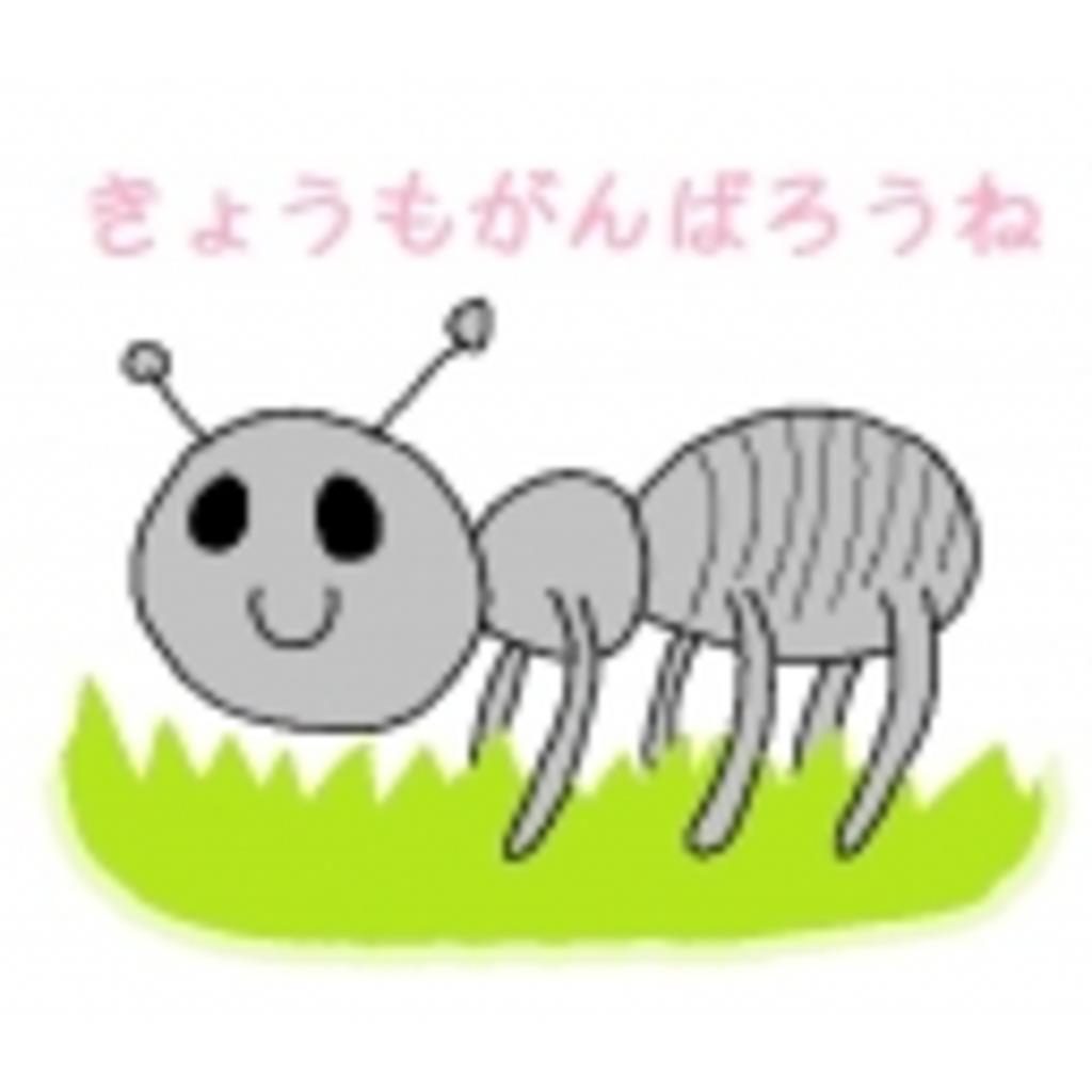 みここの森らしき場所\(^o^)/