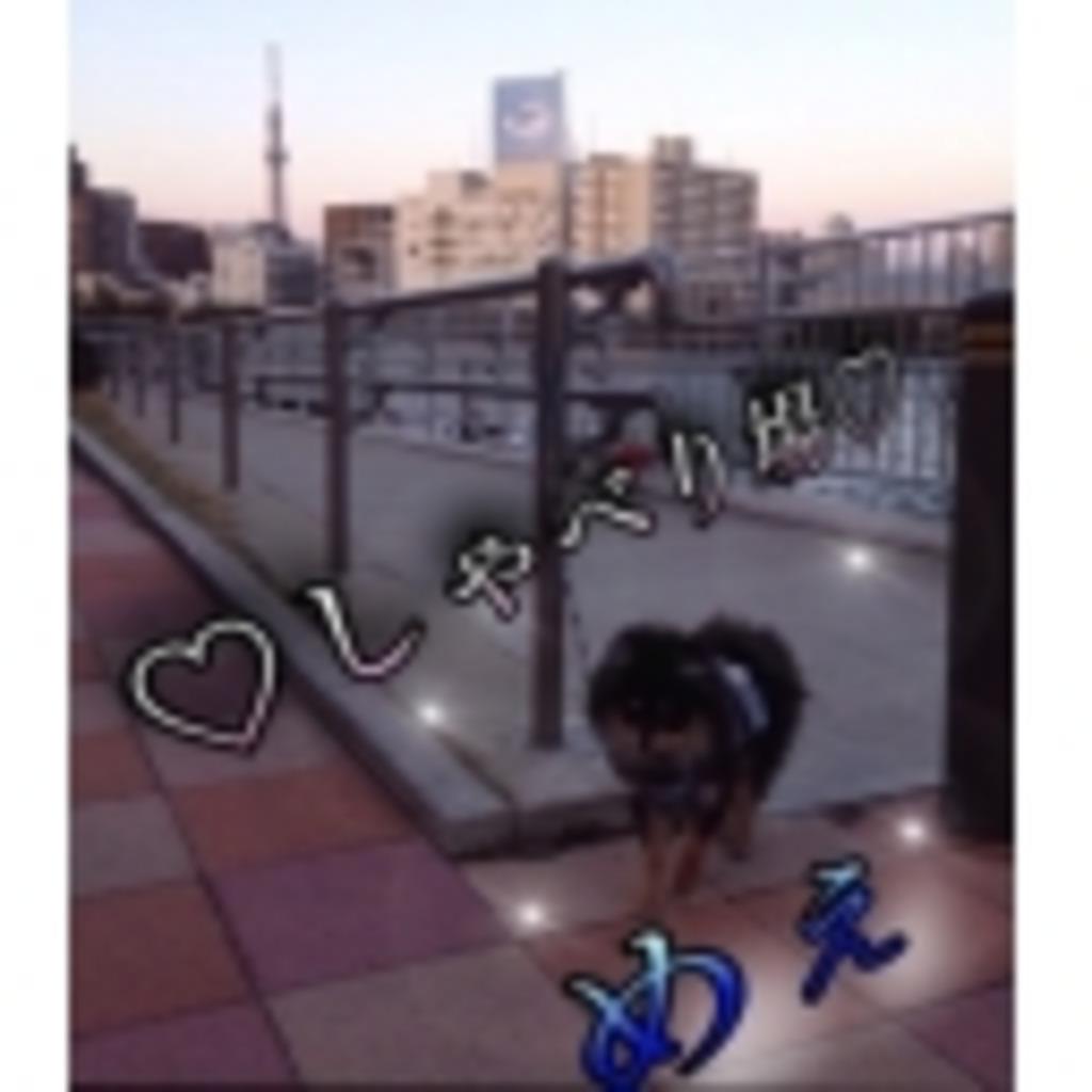 ☆・.めえの雑談場.・☆
