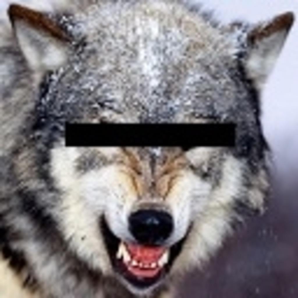ワンナイト人狼を始めてみたい人のためのコミュ