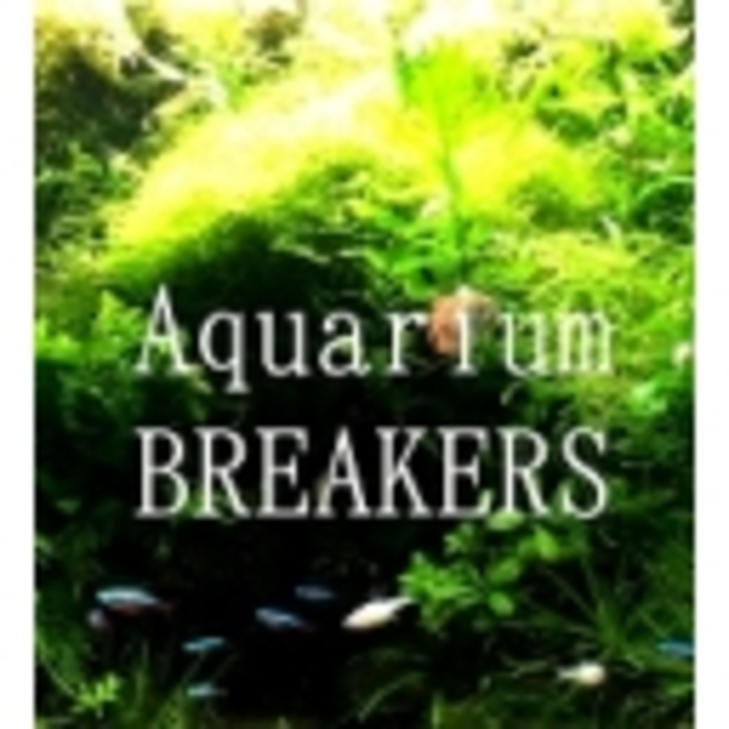BREAKERS Aquarium