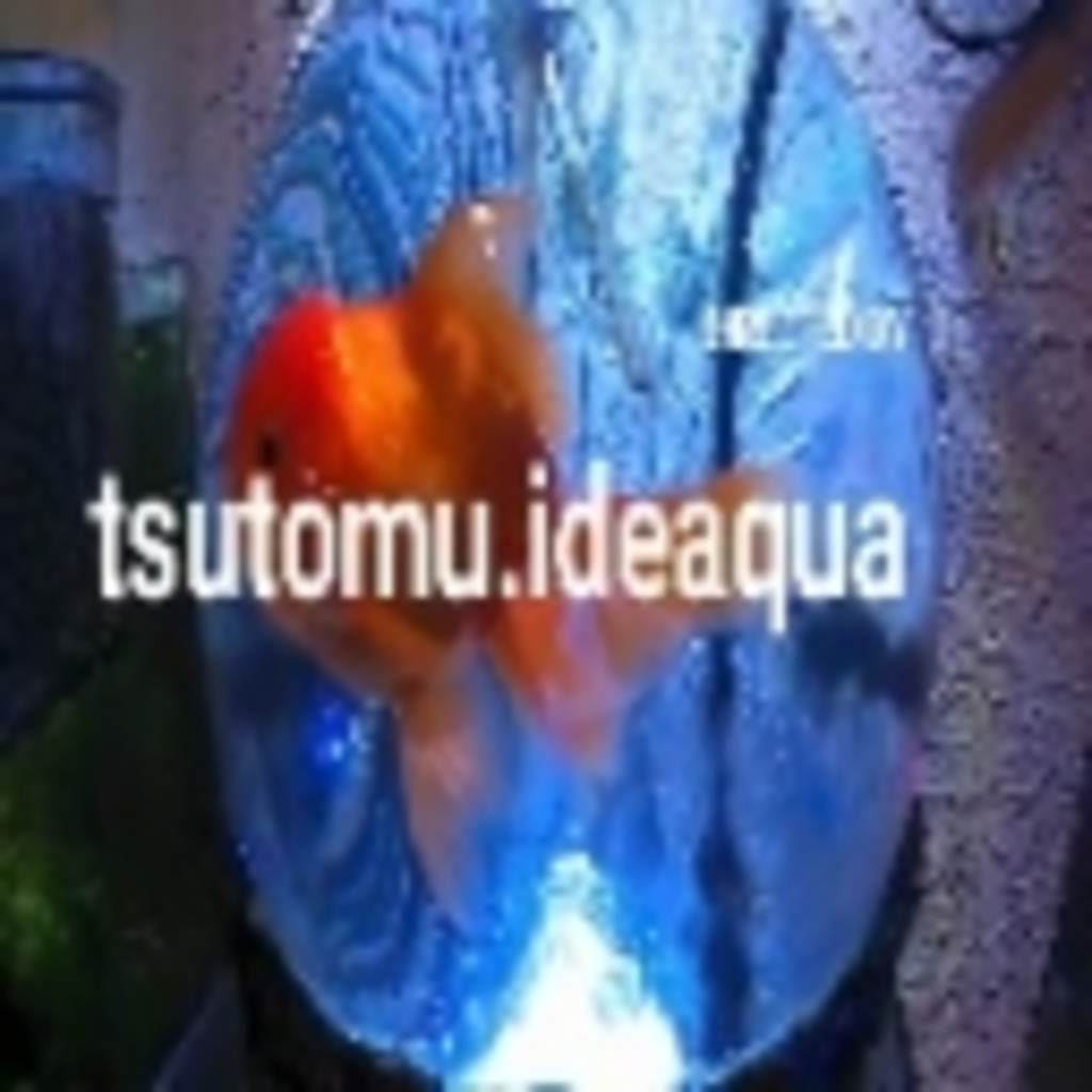 tsutomu.ideaqua