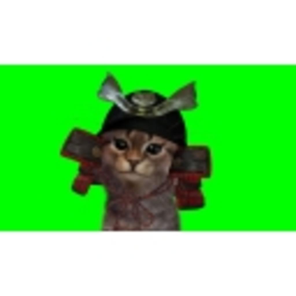 マタタビ猫武将の生放送