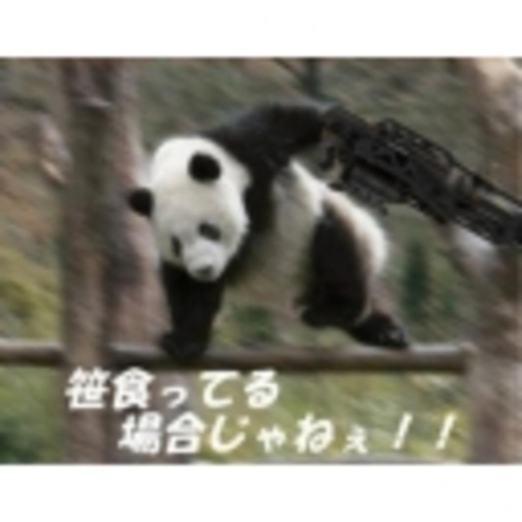 熊猫のゲームチャンネル