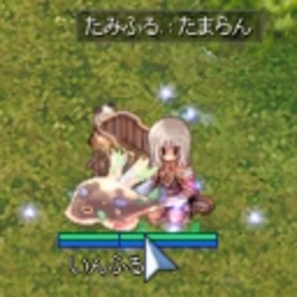 【RO】たまらんたみふる in SES