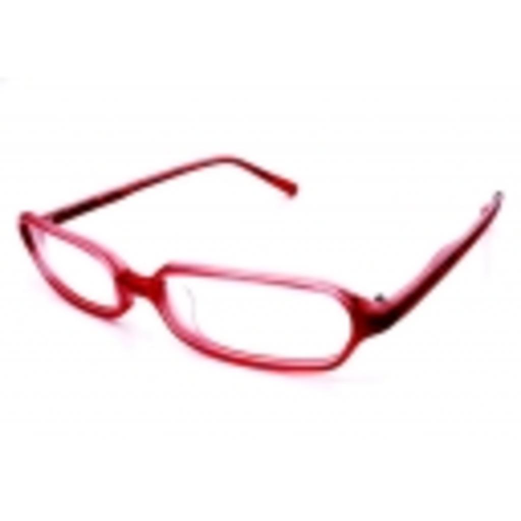 畜生眼鏡のいる日常