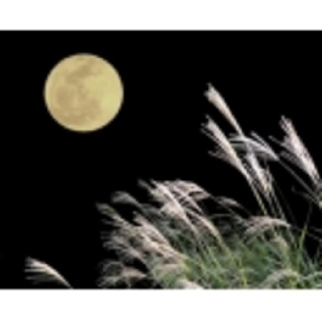 月がとても綺麗ですね