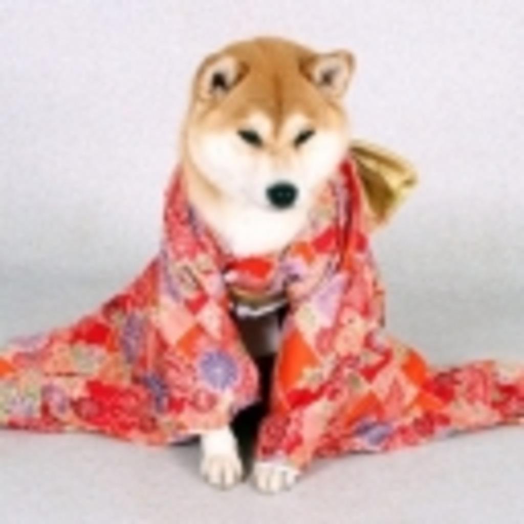 コゲ犬海外応援コミュ「コゲの犬ハウス♪」