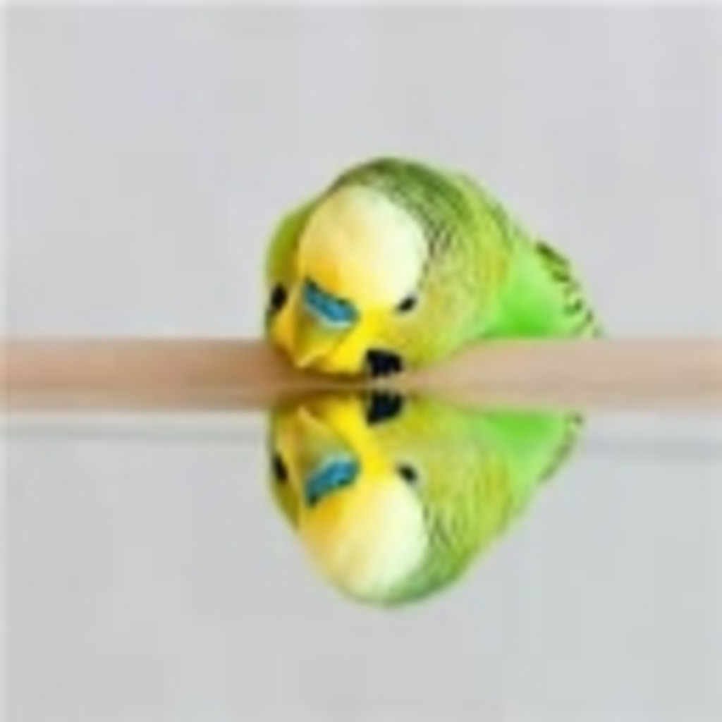 Reon_Birdゲームこみゅ